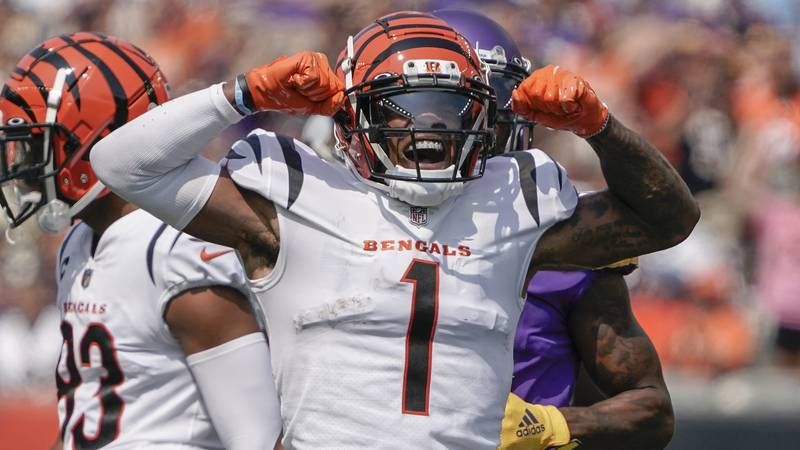 Cincinnati Bengals wide receiver Ja'Marr Chase (1) celebrates after making a catch against the...