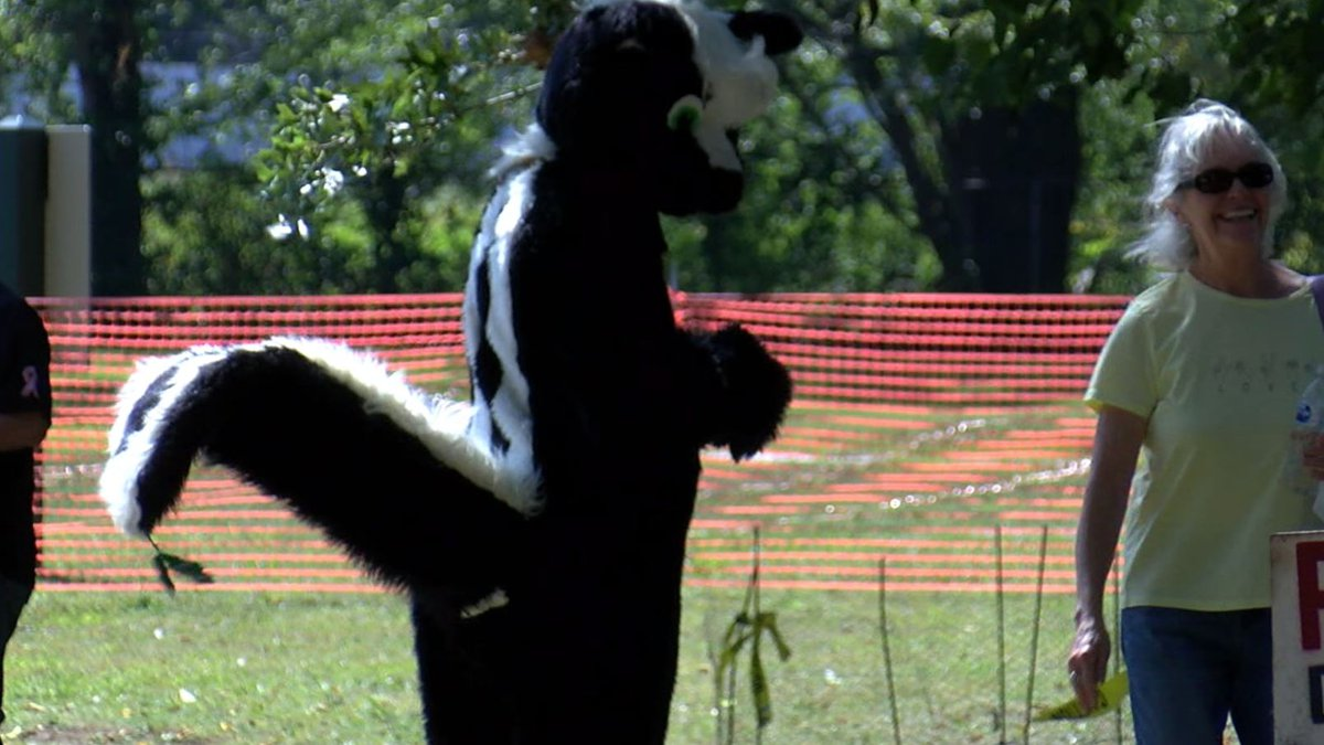 A thousand skunk enthusiasts gathered in North Ridgeville Saturday to celebrate their unusual...