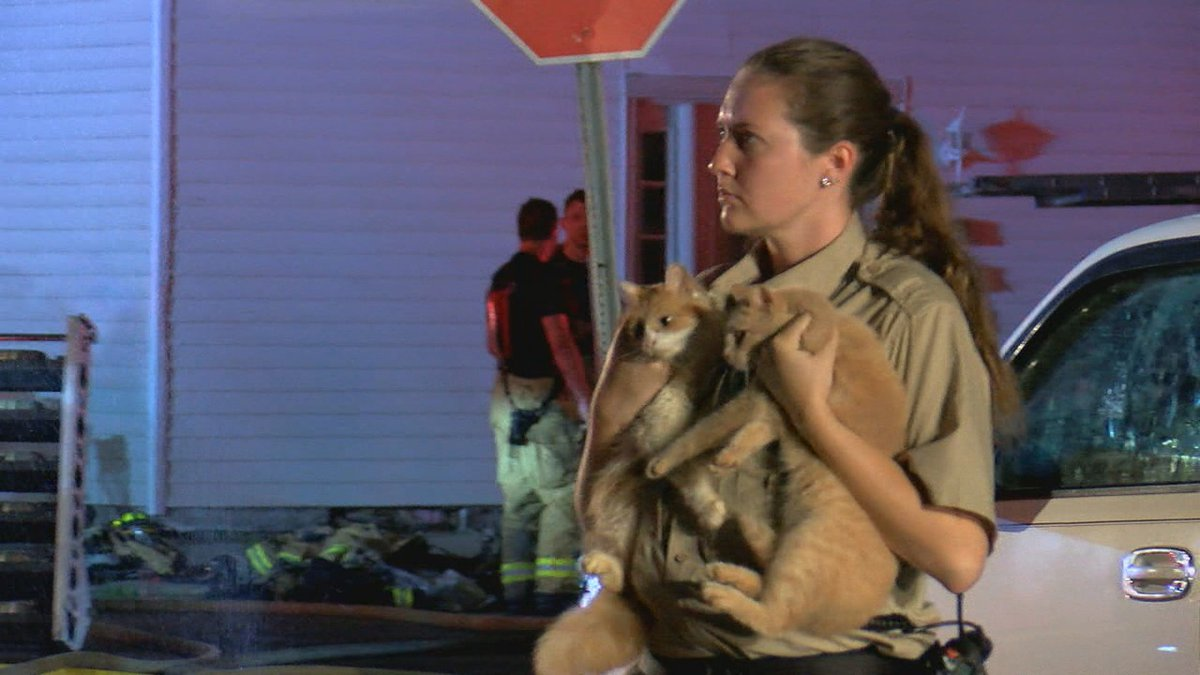 Several rabbits died in a Butler County house fire overnight, but other pets - cats and dogs -...
