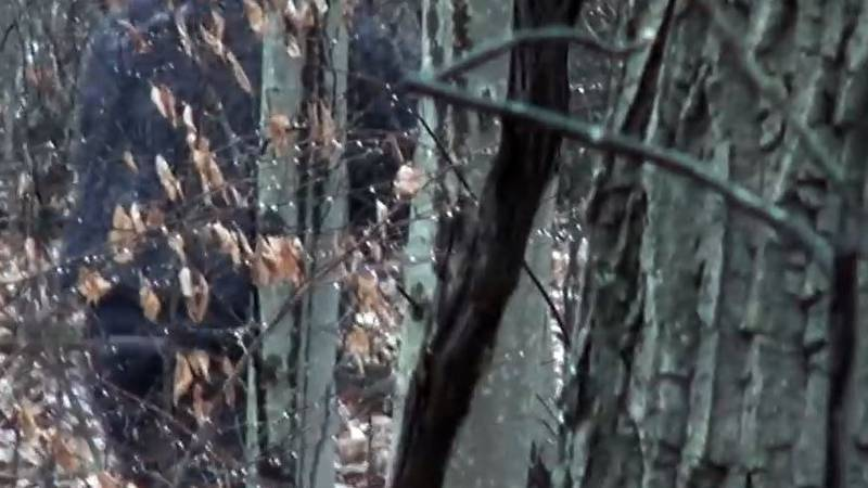 Two men claim to spot Bigfoot in southern Ohio