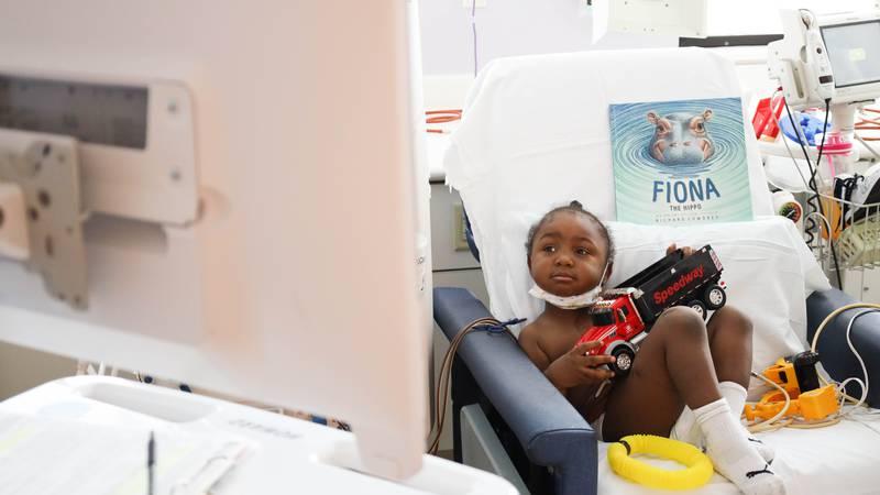 Fiona video calls with Cincinnati Children's patients. (Cincinnati Zoo)