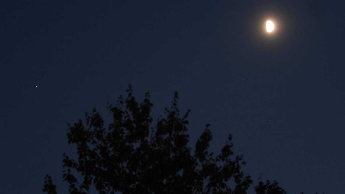 This picture from Thursday night, shows Jupiter (the brighter blue looking star) to the left of...