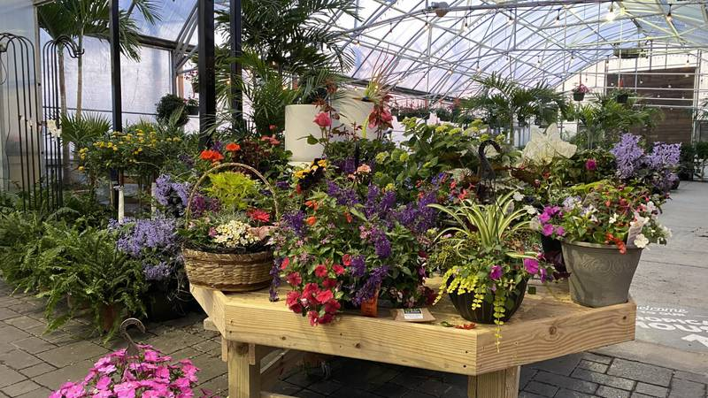 Benken Florist Home & Garden Center has a special event at its 38-acre site coming up Saturday.