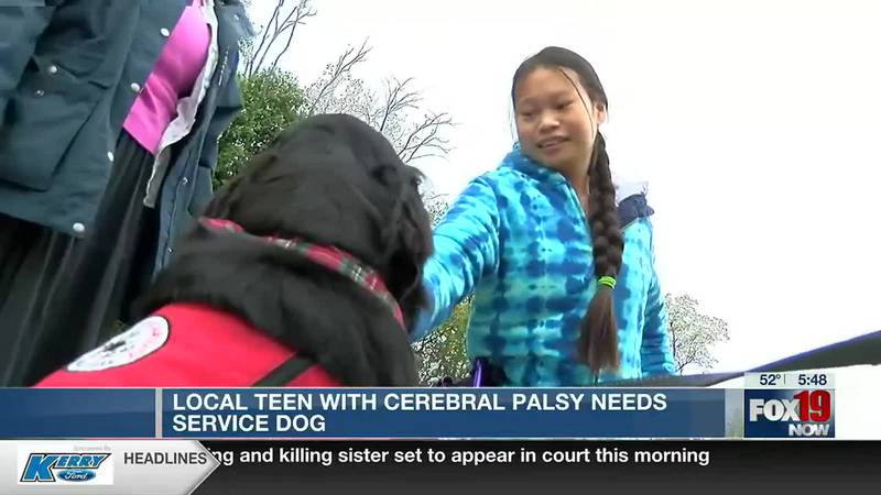 Cincinnati teen fighting brain disorder is asking for help to get a service dog