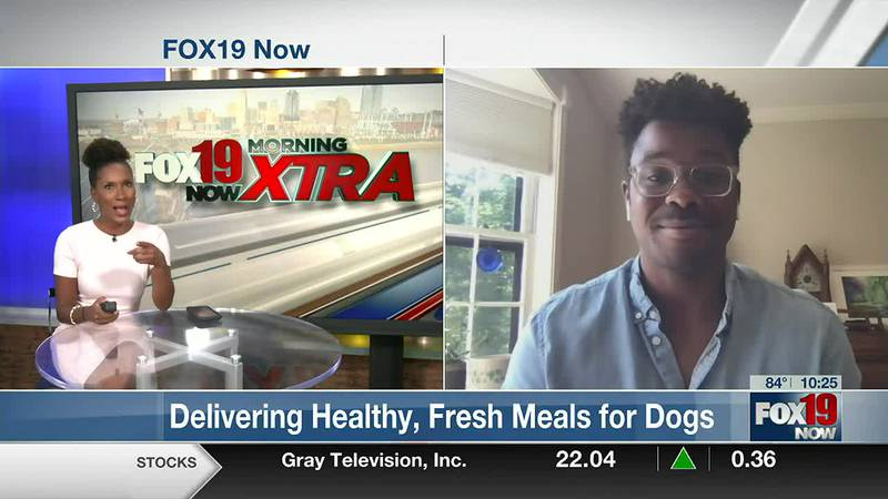 Pet Plate: Delivering Fresh, Healthy Meals for Dogs