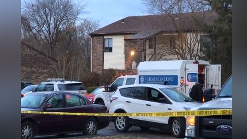 Two people are dead after a shooting in Pierce Township.