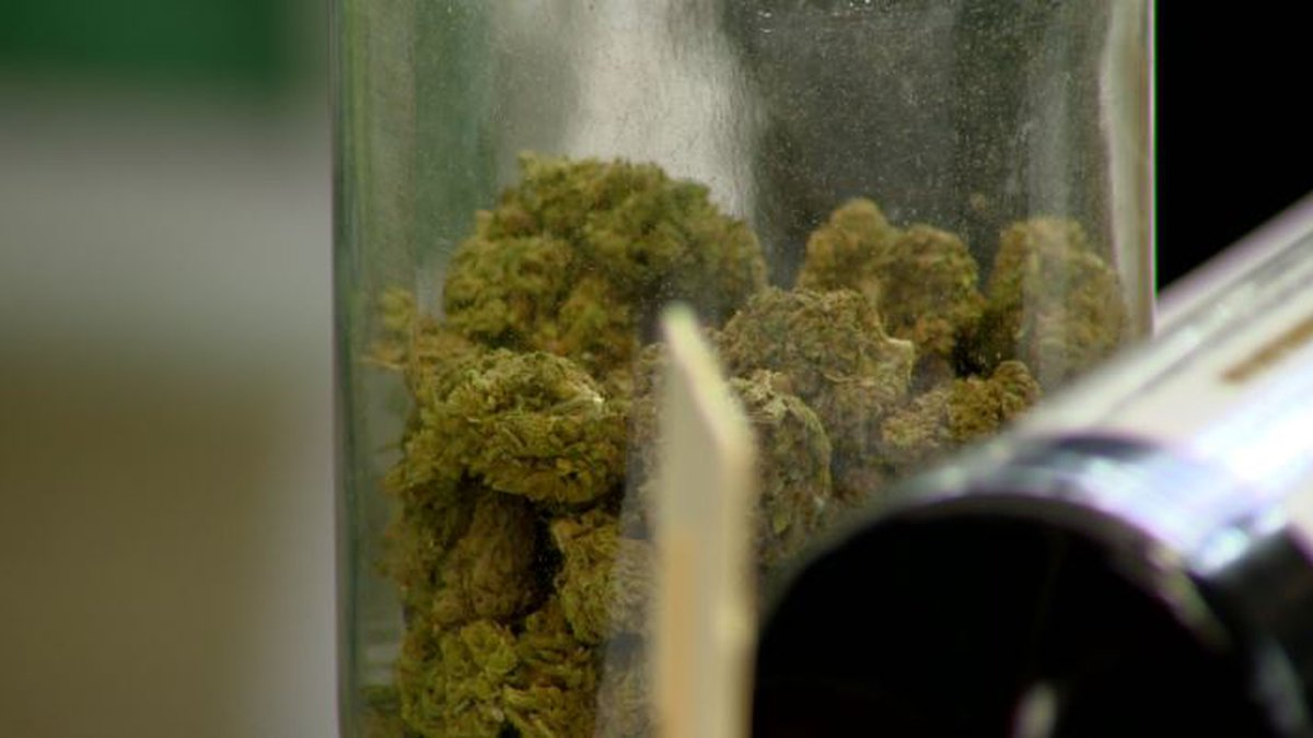 Medical Marijuana / File