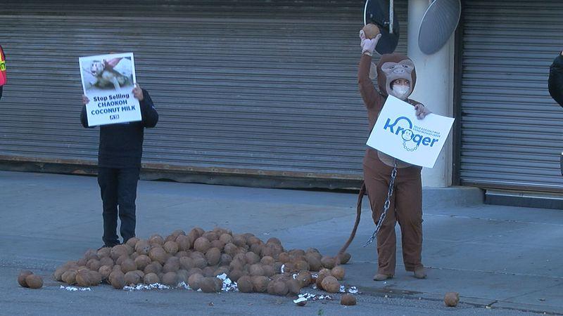 PETA protests forced monkey labor outside Kroger headquarters