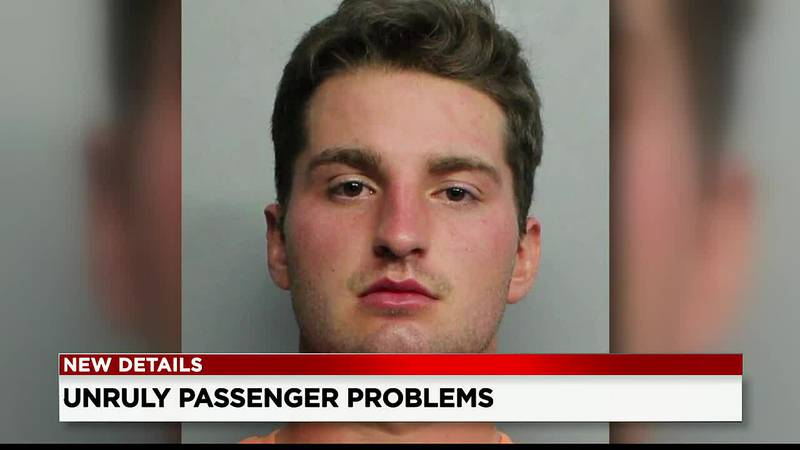 VIDEO: Northeast Ohio man arrested or allegedly groping flight attendant's breast, punching...