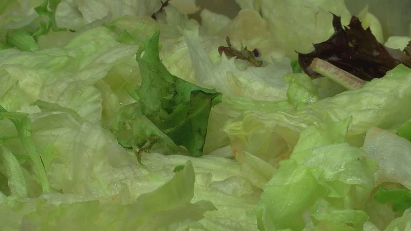 Bj's Country Buffet owner said they got rid of all romaine lettuce after the e. coli outbreak....