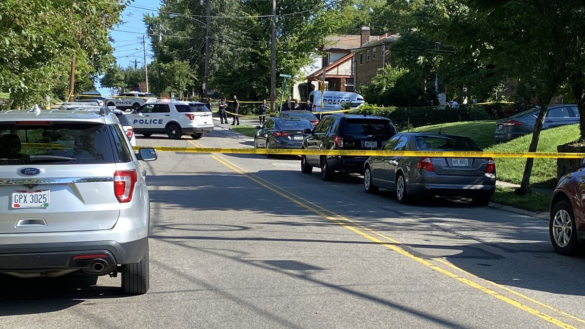 Witnesses said a suspect drove away from the scene, per police, but no description of the...