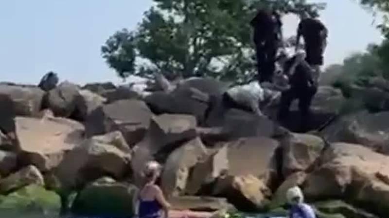 Eastlake officer and residents rescue deer trapped under breakwall boulders