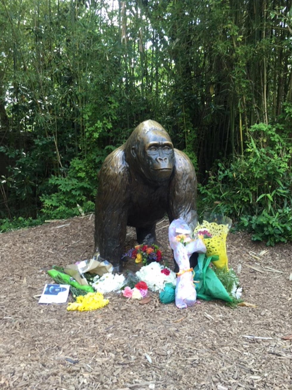 Visitors placed flowers and cards by statue at Gorilla World (PHOTO: Cincinnati Zoo/Provided)