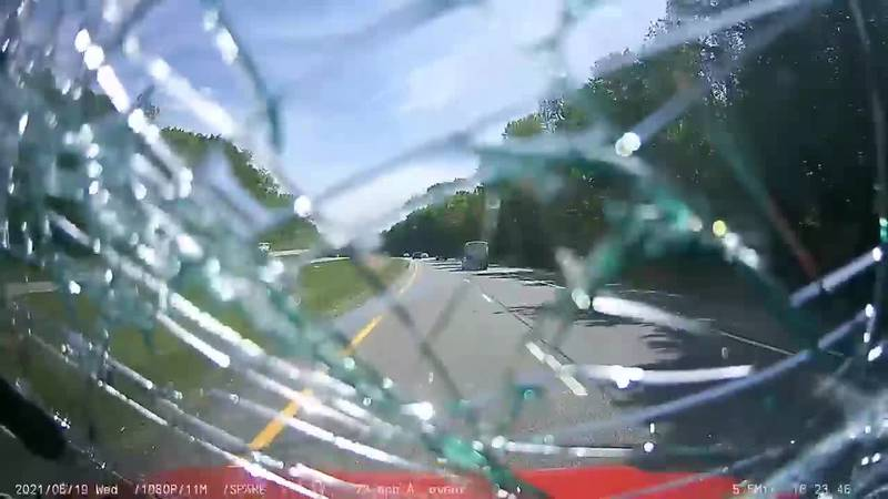 Low-flying turkey shatters windshield of Painesville ambulance with patient inside