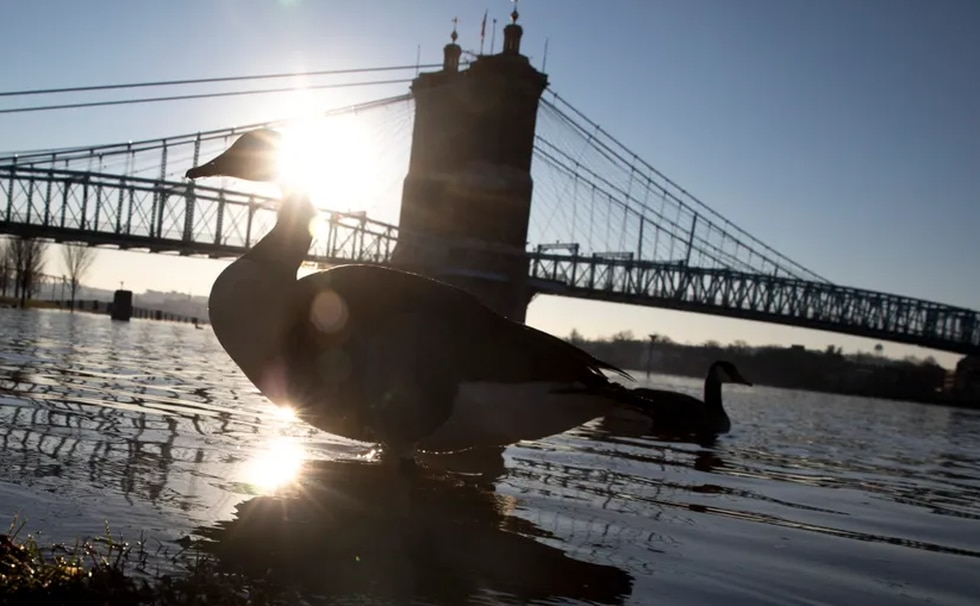 Flood risk to Cincinnati's critical infrastructure double national average, new study says - WXIX