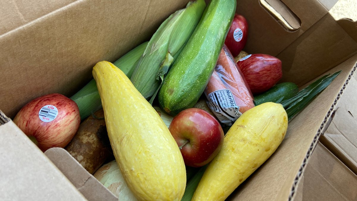 The boxes will include a combination of corn, squash, zucchini, onions, carrots, apples and...