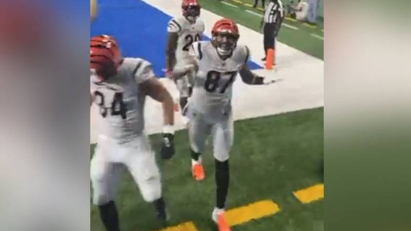 Viral video taken from a front-row fan during the Bengals win in Detroit on Sunday.